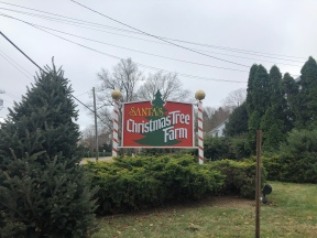 wooden entrance sign for Santa's Christmas Tree Farm along the road within the evergreens