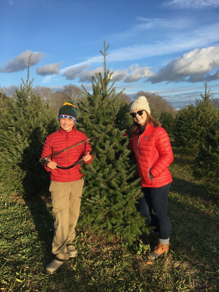 santas christmas tree farm