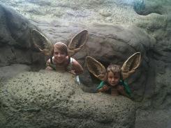 Children's Zoo Fennec Fox Ears