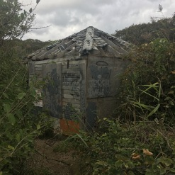 Creepy house on the beach trail