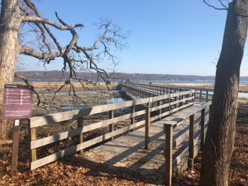 Walkway over the marsh