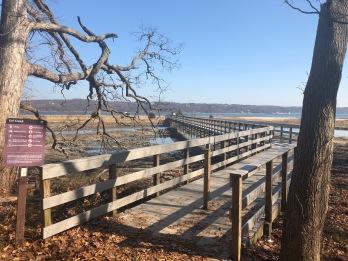 Walkway over the marsh
