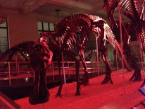 Anatotitan in the dark