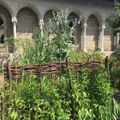 Cloisters29
