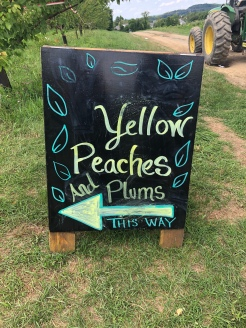 Orchard sign for picking peaches and plums, Fishkill Farm, New York