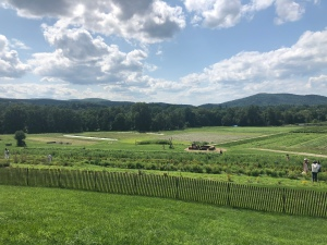 View of the Catskill Mountains from Fishkill Farm, New York