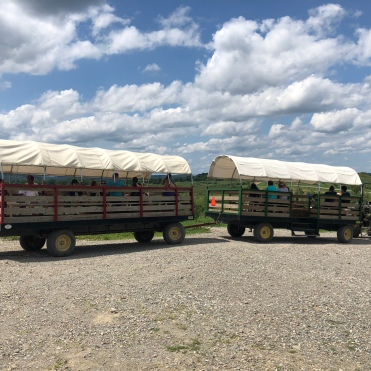 Hayride, tractor pulling trailers at Fishkill Farm, New York