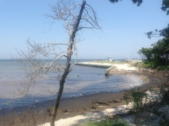 coastline with marina on Great South Bay, Sailor's Haven, Fire Island