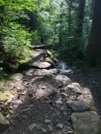 rocky trail over a stream at Kaaterskill Falls, Catskill Mountains, New York