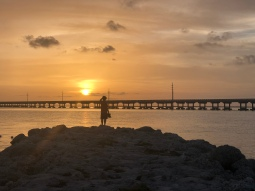 ancient exposed coral reef jetty, Key Largo Limestone at Bahia Honda State Park, Florida, sunset
