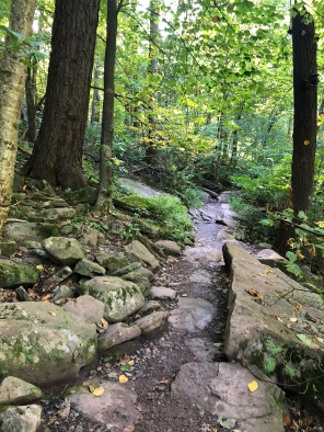 Narrow rocky trail through the forest at Kaaterskill Falls, Catskill Mountains, New York