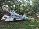 large man-made shark found roadside on Vaca Key, Florida Keys