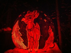 Rudolph,Carved Pumpkin from Jack O Lantern Spectacular, Roger Williams Park, Rhode Island