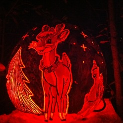 Rudolph,Carved Pumpkin from Jack O Lantern Spectacular, Roger Williams Park, Rhode Island