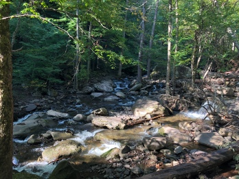 Spruce Creek at Kaaterskill Falls, Catskill Mountains, New York
