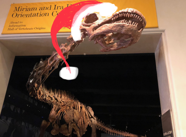 American Museum of Natural History, NYC, dinsoaur with a santa hat