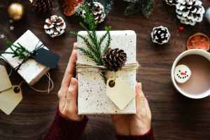 Rawpixel photo person holding gift nature wrapped box with pinecone