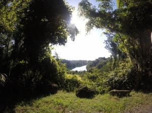 view of the lake through the trees at Canyons Zip Lines, Ocala, Florida