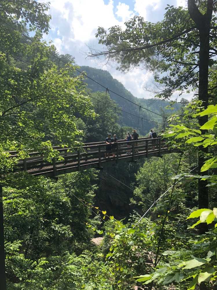 View of the suspension bridge with people on it from the trail rim at Tallulah Gorge State Park, Georgia