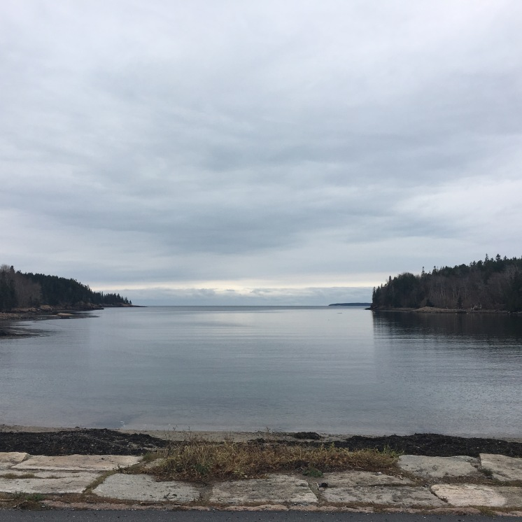 Calm Eagle Lake from road, forest and clouds in foreground, Acadia National Park, Maine