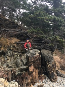 Boy sitting on ridges of granite rock and tree roots, Acadia National Park, Maine