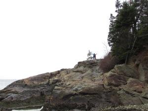 Acadia6