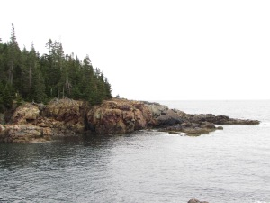 View across the cove, Little Hunters Beach, granite sea wall and forest, Acadia National Park, Maine