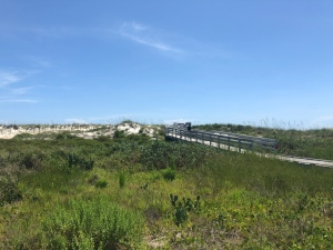 Boardwalk through the dunes to the Atlantic Ocean at Anastasia State Park, Florida