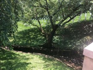 Man-made brook running through Arlington National Cemetery
