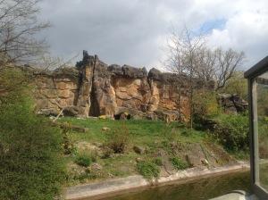 View of Big Cats enclosure at Zoo Berlin, Germany