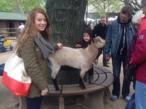 Petting goats at Zoo Berlin, Germany