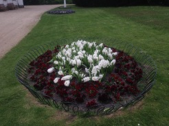 Red and white flower bed at Pfaueninsel, Peacock Island, Germany