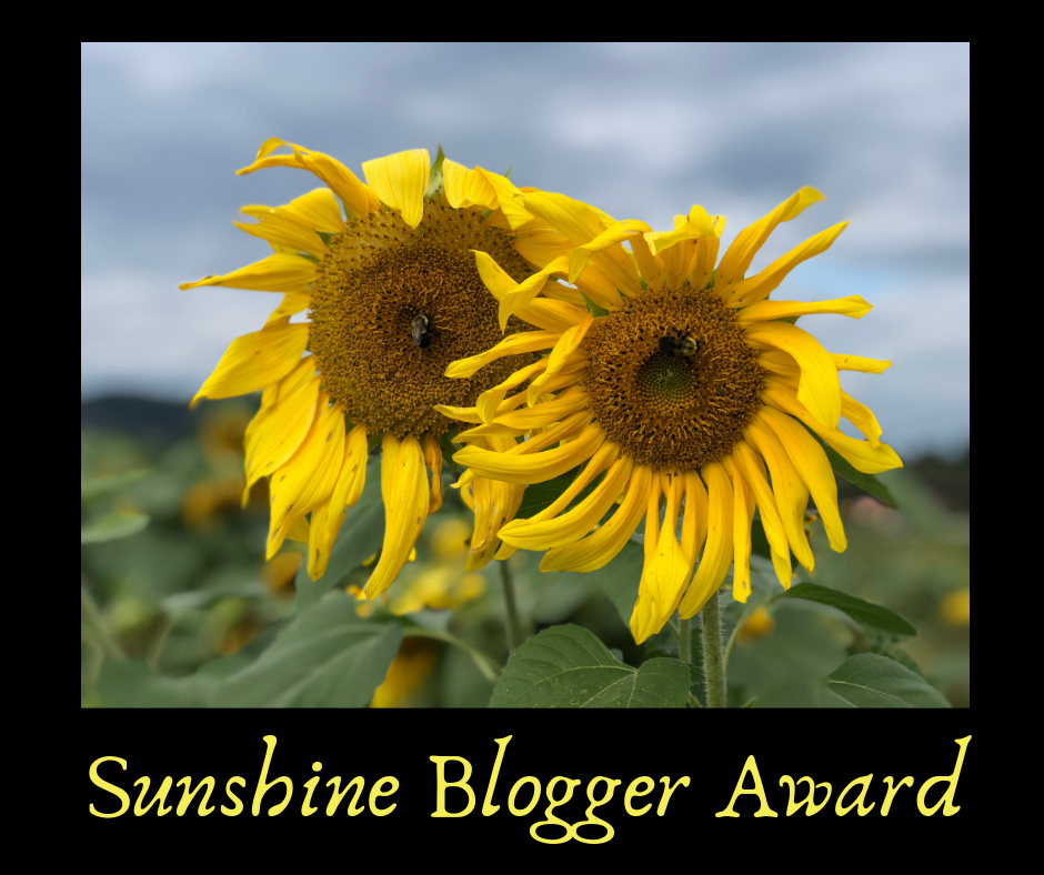Sunshine Blogger Award Sunflowers