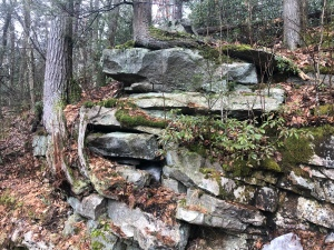 Quartz rock conglomerate along forest trail, Minnewaska Preserve, New York