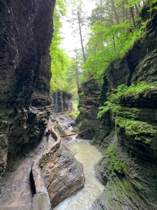 View of the Gorge & Stream at Watkins Glen State Park, New York