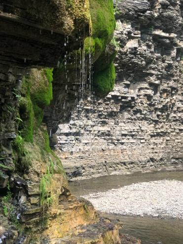 Lush green water soaked walls at Eagle Clif