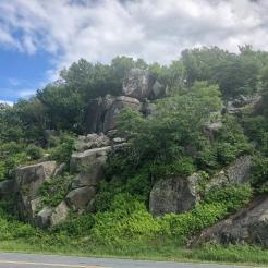Skyline Drive roadside forested rock, Shenandoah National park, VA
