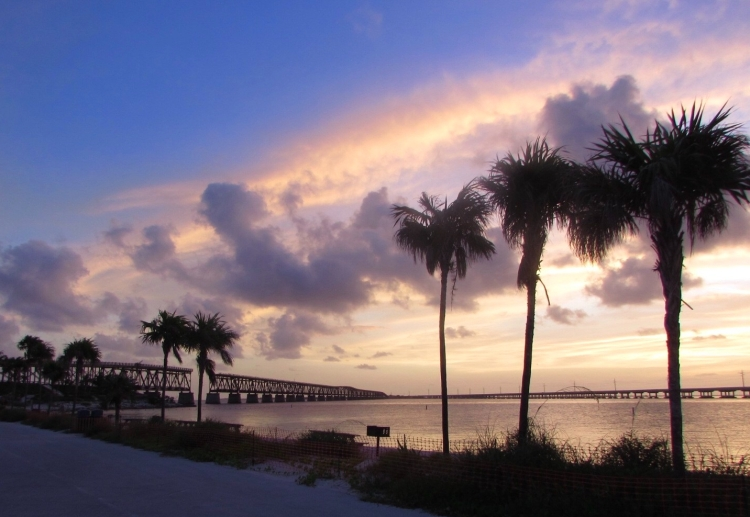 Bahia Honda Key sunset, palm trees, beach, Florida