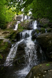 Dark Hollow Falls, Shenandoah National Park, courtesy of National Park Service